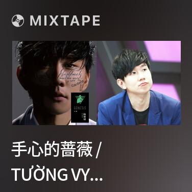 Radio 手心的蔷薇 / Tường Vy Trong Lòng Bàn Tay - Various Artists