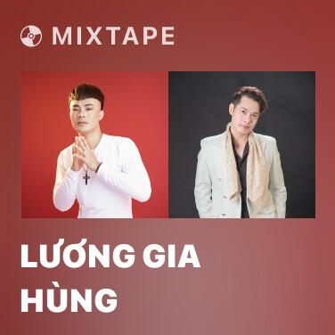 Radio Lương Gia Hùng - Various Artists