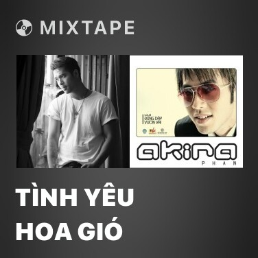 Mixtape Tình Yêu Hoa Gió - Various Artists