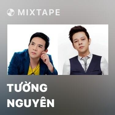 Mixtape Tường Nguyên - Various Artists