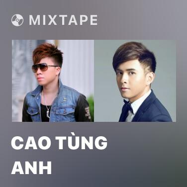 Radio Cao Tùng Anh - Various Artists