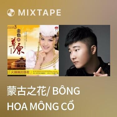 Radio 蒙古之花/ Bông Hoa Mông Cổ - Various Artists