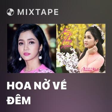 Mixtape Hoa Nở Về Đêm - Various Artists