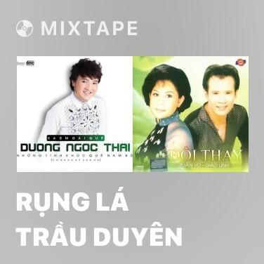 Mixtape Rụng Lá Trầu Duyên - Various Artists