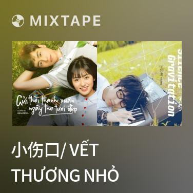 Radio 小伤口/ Vết Thương Nhỏ - Various Artists