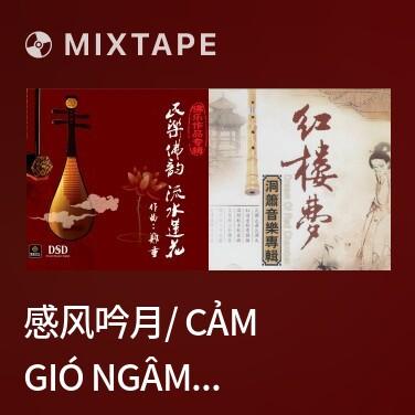 Radio 感风吟月/ Cảm Gió Ngâm Trăng - Various Artists