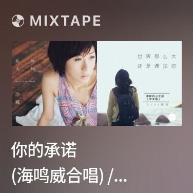 Mixtape 你的承诺 (海鸣威合唱) / Lời Hứa Của Em - Various Artists