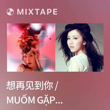 Mixtape 想再见到你 / Muốm Gặp Lại Anh - Various Artists