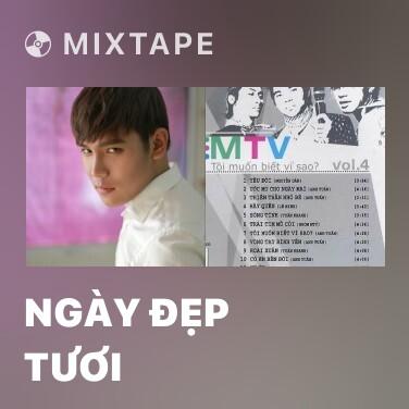 Mixtape Ngày Đẹp Tươi - Various Artists