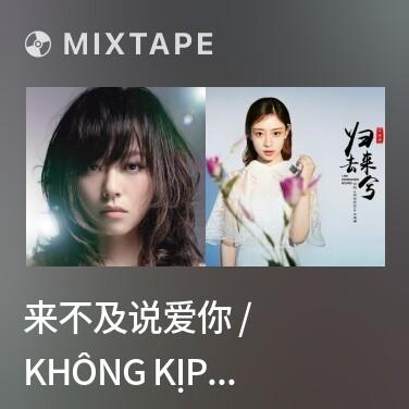Mixtape 来不及说爱你 / Không Kịp Nói Yêu Anh - Various Artists