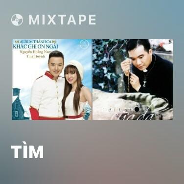Mixtape Tìm - Various Artists