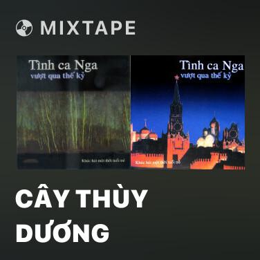 Mixtape Cây Thùy Dương - Various Artists