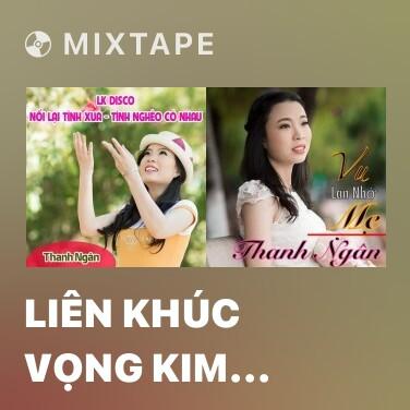 Mixtape Liên khúc Vọng Kim Lang - Various Artists