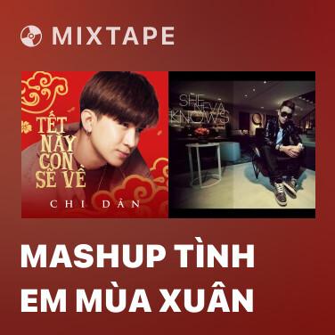 Mixtape Mashup Tình Em Mùa Xuân - Various Artists