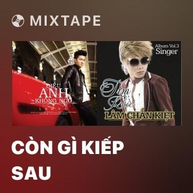 Radio Còn Gì Kiếp Sau - Various Artists