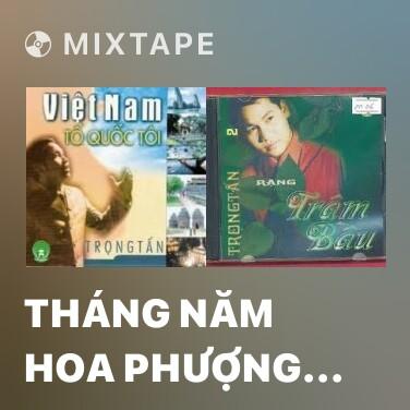 Mixtape Tháng Năm Hoa Phượng Đỏ - Various Artists