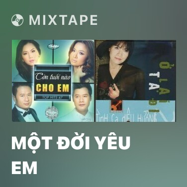 Mixtape Một Đời Yêu Em - Various Artists