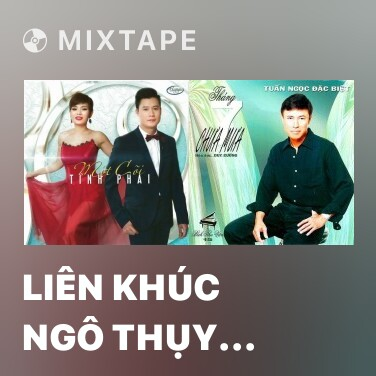 Mixtape Liên Khúc Ngô Thụy Miên - Various Artists
