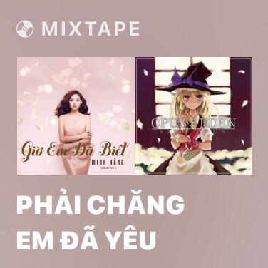 Mixtape Phải Chăng Em Đã Yêu - Various Artists