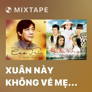 Mixtape Xuân Này Không Về Mẹ Ơi - Various Artists