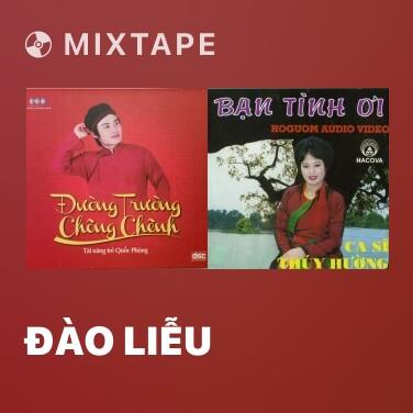 Mixtape Đào Liễu - Various Artists