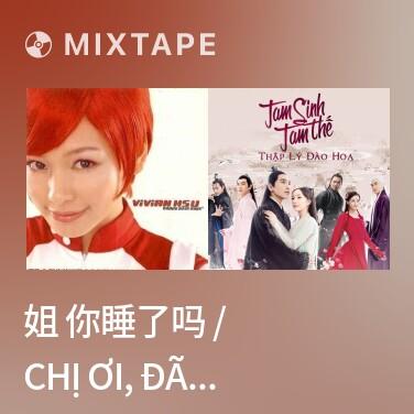 Mixtape 姐 你睡了吗 / Chị Ơi, Đã Ngủ Chưa - Various Artists