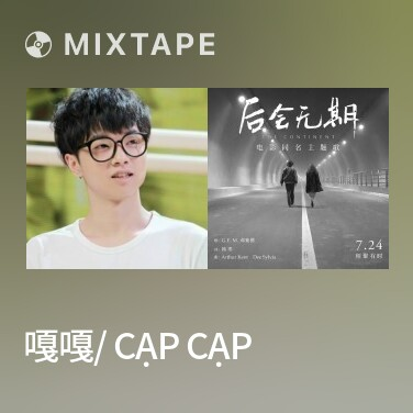 Radio 嘎嘎/ Cạp Cạp - Various Artists