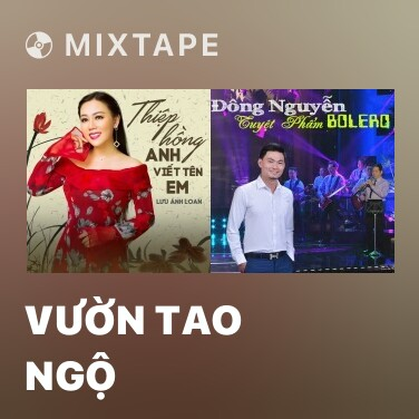 Radio Vườn Tao Ngộ - Various Artists