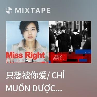 Mixtape 只想被你爱/ Chỉ Muốn Được Anh Yêu - Various Artists