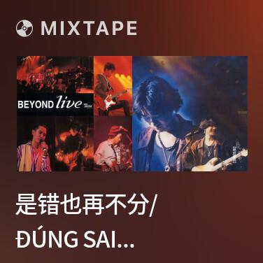 Mixtape 是错也再不分/ Đúng Sai Cũng Không Muốn Phân Biệt Nữa - Various Artists