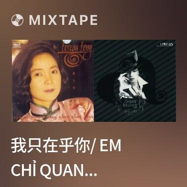 Radio 我只在乎你/ Em Chỉ Quan Tâm Anh - Various Artists