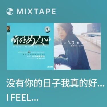 Mixtape 没有你的日子我真的好孤单/ I Feel Lonely Without You - Various Artists