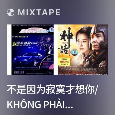 Mixtape 不是因为寂寞才想你/ Không Phải Vì Cô Đơn Mới Nhớ Em - Various Artists