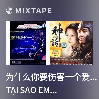 Mixtape 为什么你要伤害一个爱你的人/ Tại Sao Em Lại Tổn Thương Người Yêu Em - Various Artists