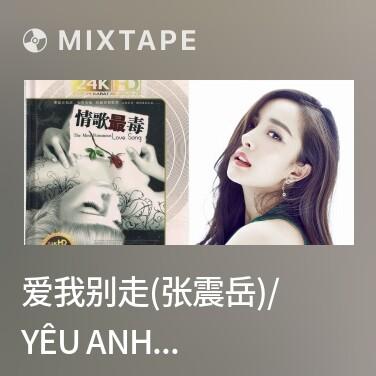 Mixtape 爱我别走(张震岳)/ Yêu Anh Đùng Đi - Various Artists