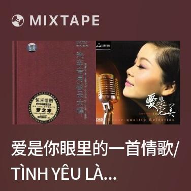 Mixtape 爱是你眼里的一首情歌/ Tình Yêu Là Một Bản Tình Ca Trong Mắt Em - Various Artists