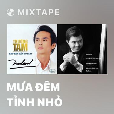 Mixtape Mưa Đêm Tỉnh Nhỏ - Various Artists