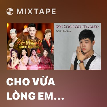 Mixtape Cho Vừa Lòng Em (Remix) - Various Artists