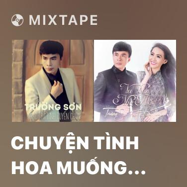Radio Chuyện Tình Hoa Muống Biển - Various Artists