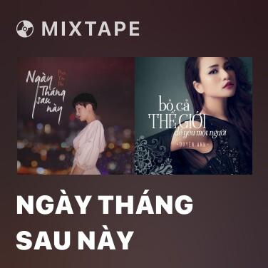 Mixtape Ngày Tháng Sau Này - Various Artists