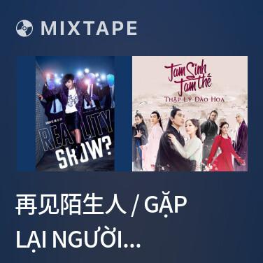 Mixtape 再见陌生人 / Gặp Lại Người Xa Lạ - Various Artists
