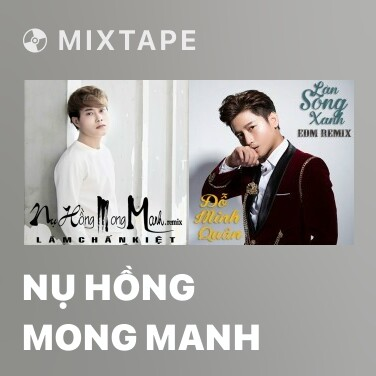 Mixtape Nụ Hồng Mong Manh - Various Artists
