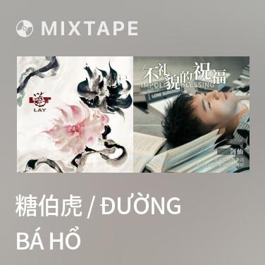 Radio 糖伯虎 / Đường Bá Hổ - Various Artists
