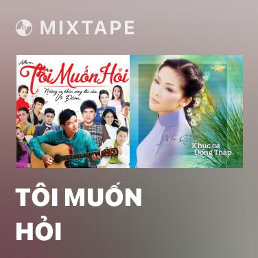 Mixtape Tôi Muốn Hỏi - Various Artists