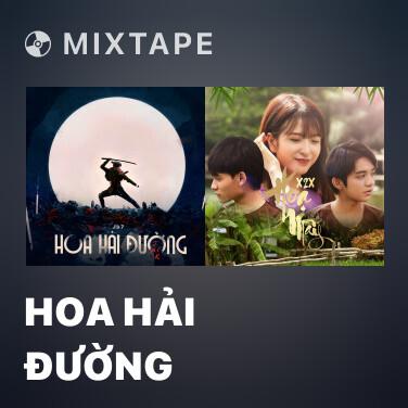 Radio Hoa Hải Đường - Various Artists