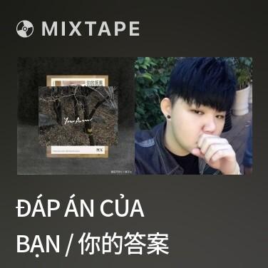 Mixtape Đáp Án Của Bạn / 你的答案 - Various Artists
