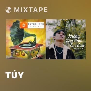Mixtape Túy - Various Artists