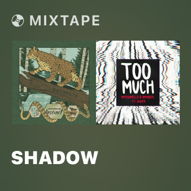 Mixtape Shadow - Various Artists