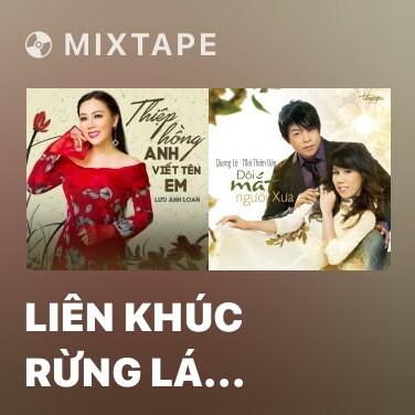 Mixtape Liên Khúc Rừng Lá Thấp - Biển Mặn - Various Artists