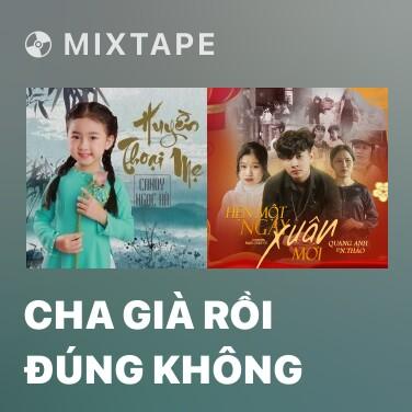 Radio Cha Già Rồi Đúng Không - Various Artists